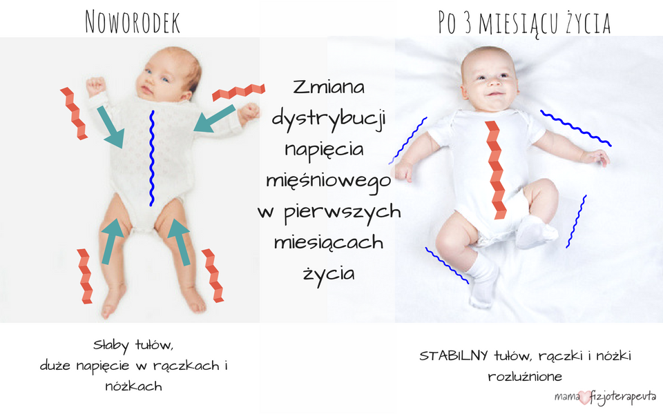 oferować rabaty odebrane 100% jakości Noszenie dziecka- o co tyle hałasu? – mamafizjoterapeuta